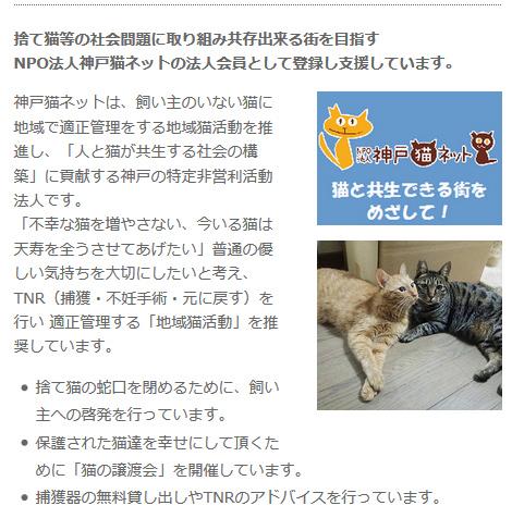 猫と共生できる街をめざして!NPO法人神戸猫ネットの法人会員として登録し支援しています。