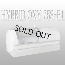 画像1: 【展示・撮影】HYBRID OXY75S-B1  ハイブリッド・オキシ- 新製品