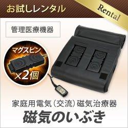 画像1: 【お試しレンタル】家庭用電気磁気治療器 磁気のいぶき