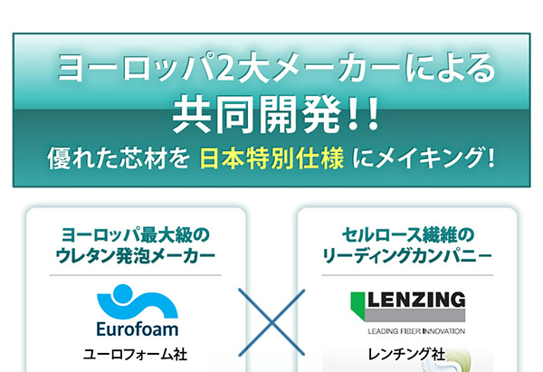ヨーロッパ2大メーカーによる共同開発!!