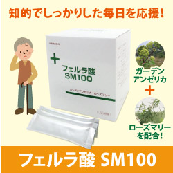フェルラ酸SM100 1.5g×60包