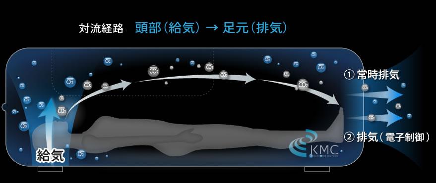 対流経路イメージ図