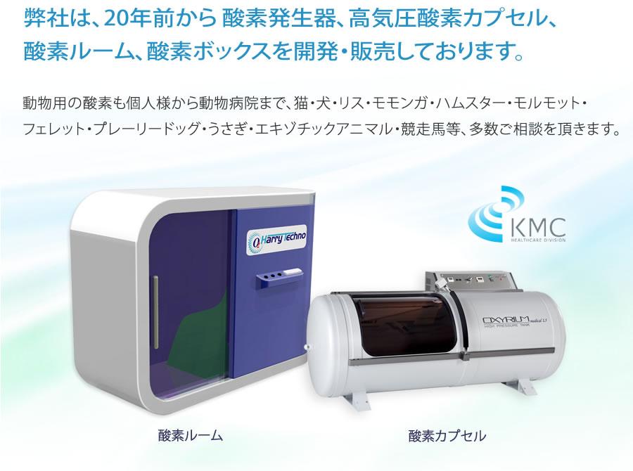 弊社は、20年前から酸素発生器、高気圧酸素カプセル、酸素ルーム、酸素ボックスを開発販売しております。