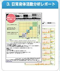 3.日常身体活動分析レポート